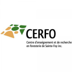 Copie de Logo - CERFO